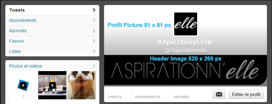Aspirationn'elle - Community Manager Freelance Autoentrepreneur Lille - Cover et profil Twitter dimensions